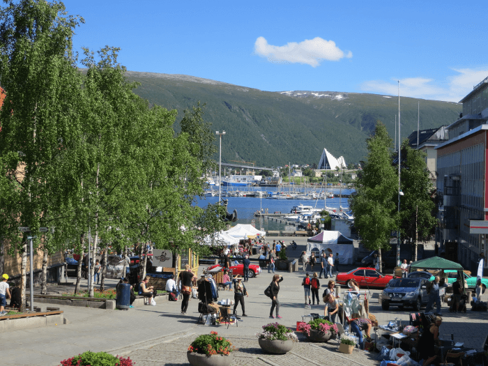 Tromsø Beer Safari